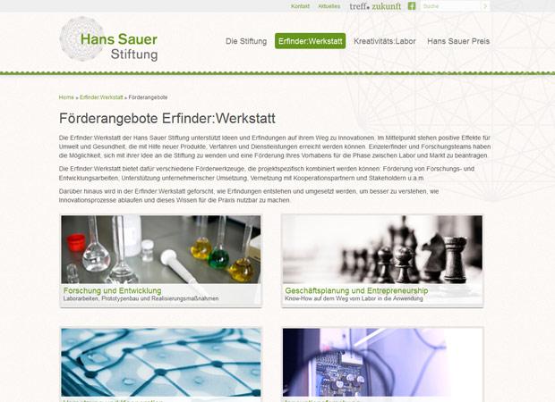 Screenshot Webseite Hans Sauer Stiftung