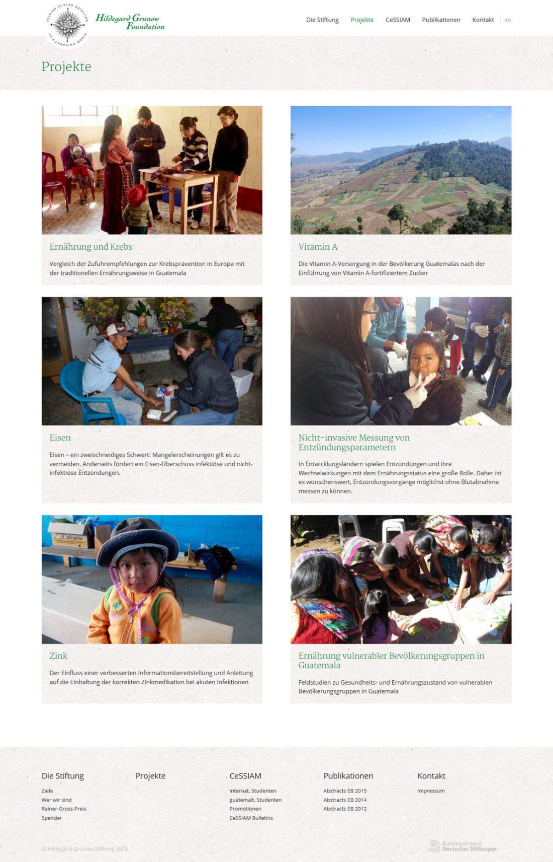 Screenshot Webseite Hildegard Grunow Stiftung